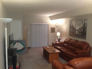 One bedroom for rent in a two bedroom furnished apt Kitchener / Waterloo Kitchener Area image 4