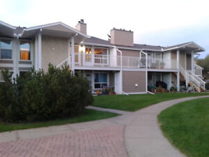 2 Bedroom/Edmonton South/FirePlace/Quite/LRT/In-Suite Laundry