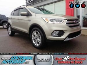 Ford Escape SE | 4x4 | Bluetooth | Backup Cam. | Heated Seats 20