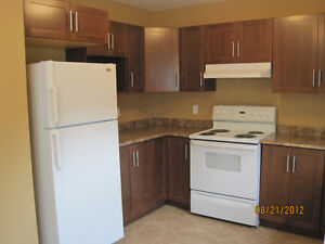 Available 4 bedroom 10 min walk to MUN & downtown $1300