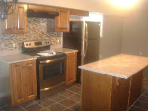 LARGE BRIGHT NEW TWO BEDROOM APT NEAR VILLAGE