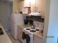 Cozy 2 bedroom condo in Strathmore Alberta $1,100.00/month
