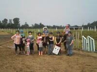 Micro Camps : Horse Riding for kids of all ages!!