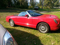 *reduced* 50th Anniversary Edition Ford Thunderbird