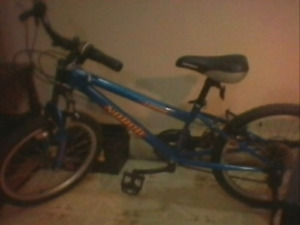 "Norco turbo 20"" boys bike"