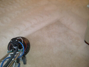 Certified, Professional Carpet and Upholstery Cleaning Services Kitchener / Waterloo Kitchener Area image 5