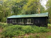 Large Rural Workshop with Large Open Lean-to Shed & Yard near Lasham, Hampshire