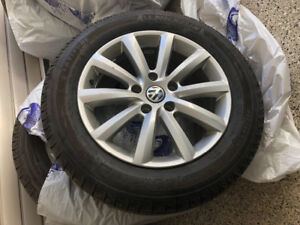 Winter tires on VW mags (4)