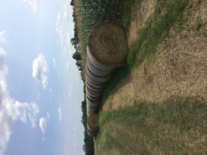4 X 5 round bales of second cut hay