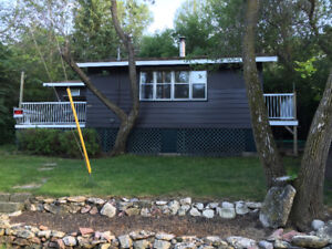 CABIN FOR RENT BY WEEK BUFFALO POUND