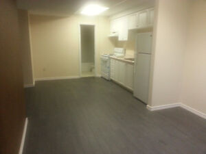 Beautiful One Bedroom Basement Apartment with Separate Entrance