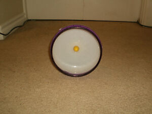 Beautiful excersize Wheel for Hamster