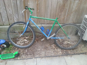 Beater Norco MTB frame