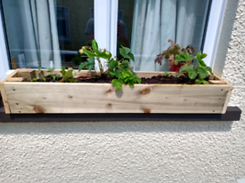 Window boxes for sale