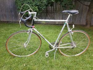 Nikishi 10 Speed Bike