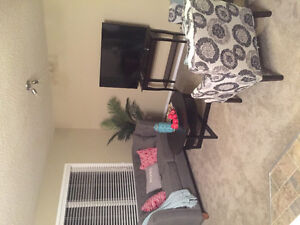 Looking for single professional female rent a room in Banff.