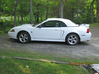 40th Anniversay  2004 Ford Mustang Convertible