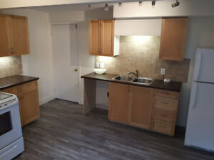 $1000/m 2 Beds, 1 Bath, Newly Renovated Apartment- Lantz NS