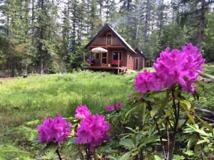 Cute and cosy cabin near Nelson, British Columbia