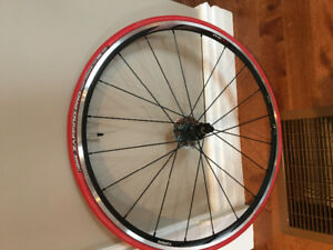 HOME TRAINING TIRE-ZAFFIRO PRO SHIMANO RIM