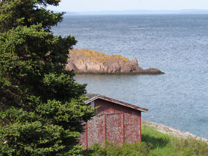 BACON COVE RD, AWESOME OCEAN VIEWS..BACON COVE.. St. John's Newfoundland image 4