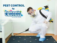 Pest Control Services in London | Bed Bugs/Mice/Moths/Wasps