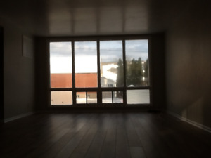 Spacious 3 Bedroom Apartment in Central Location (Furnished)