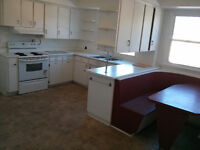 Large, nice 4 bedroom apartment in ideal location