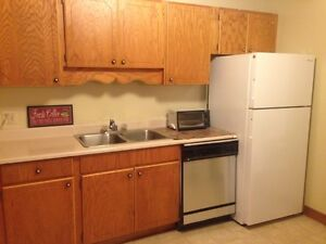 3 bedroom spacious apartment heated downtown