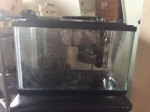 5 gallon fish tank & accesories