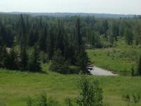 Pasture Quarter Section
