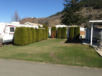 Site #24 Lease - Waterfront RV Park on Little Shuswap Lake