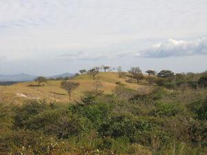 Terrain à vendre au Costa Rica