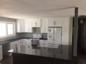 FINECUT CABINETRY - CLASSY KITCHEN CABINETS AND FULL RENO