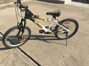 20 inch kids bike