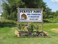 DOG BOARDING & GROOMING -- STRATHROY AREA