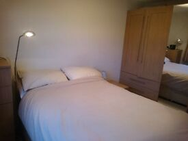 Lovely double bedroom available in a 3 bedroom flat