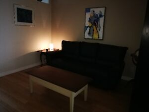 Bright, fully furnished 3 ½ to rent. Available as of August 1st