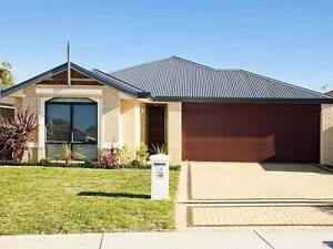 HOME OPEN TODAY SAT 11/2 Large Modern 4 x 2 Neat & Tidy Orelia Kwinana Area Preview