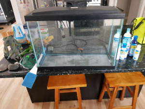Aqueon HD 13 Gallon LED Fish Tank with everything you need