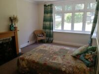 Large Double Room in Upper Norwood (Bills incl!)