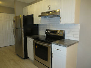 Fully renovated condo apartment