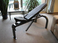 Northern Light Adjustable Bench - Top Quality