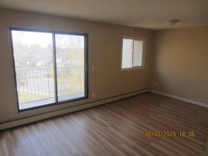 ONE MONTH FREE: 2BED ROOM APT IN CLAREVIEW AREA