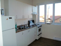 Large Centrally Located 1 Bedroom Apartment