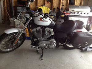 Beautiful 2007 Harley Sportster XL 883 (Rebuilt to 1200cc)