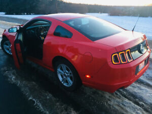 2014 Ford Mustang V6 (Clean, Low 32 km, WINTER TIRES/RIMS)