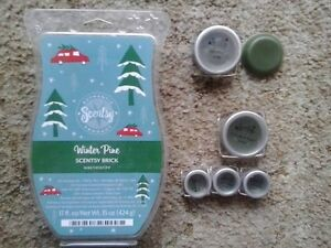 Scentsy assorted Pine lot - Winter, Iced and Festival of Trees