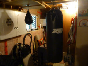 Boxing heavy bag and punching bag