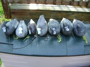 several hunting duck decoys